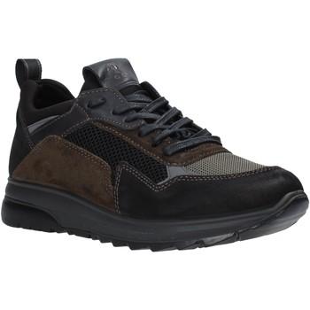 kengät Miehet Matalavartiset tennarit IgI&CO 6139000 Musta