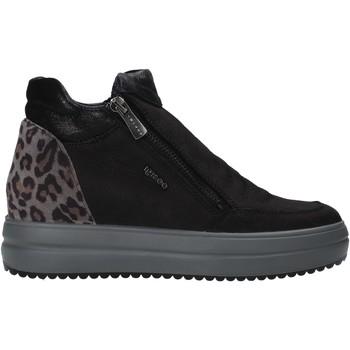 kengät Naiset Bootsit IgI&CO 6155766 Musta