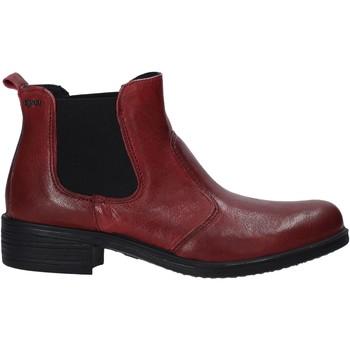 kengät Naiset Bootsit IgI&CO 6158511 Punainen