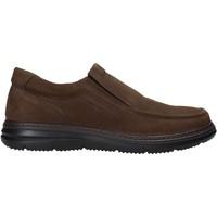 kengät Miehet Tennarit Enval 6209222 Ruskea