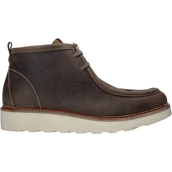 kengät Miehet Bootsit Docksteps DSM204003 Ruskea