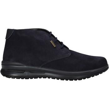 kengät Miehet Bootsit Valleverde VL53823 Sininen