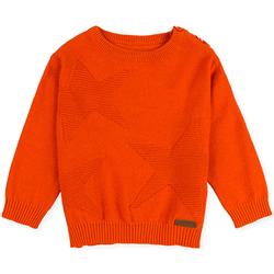 vaatteet Lapset Neulepusero Losan 027-5653AL Oranssi
