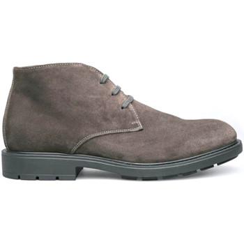 kengät Miehet Bootsit NeroGiardini I001651U Harmaa