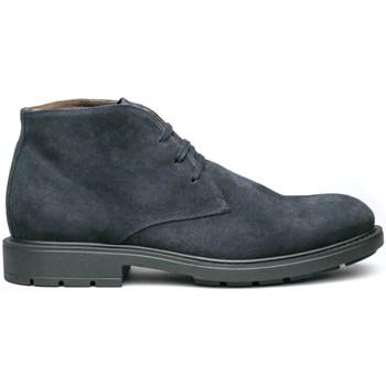 kengät Miehet Bootsit NeroGiardini I001651U Sininen