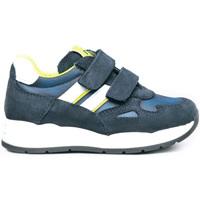 kengät Lapset Matalavartiset tennarit NeroGiardini I023910M Sininen