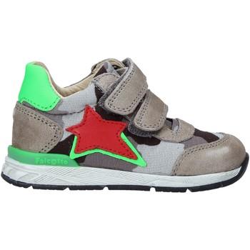 kengät Lapset Tennarit Falcotto 2015450 01 Harmaa