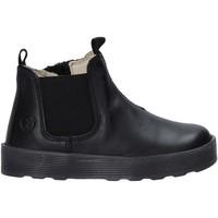 kengät Tytöt Bootsit Falcotto 2501860 01 Musta