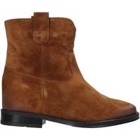 kengät Naiset Bootsit Pregunta MAA3307 Ruskea