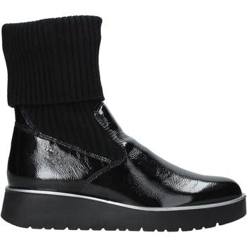 kengät Naiset Bootsit IgI&CO 6151100 Musta