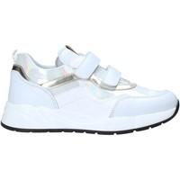 kengät Lapset Matalavartiset tennarit NeroGiardini I021512F Valkoinen
