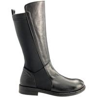 kengät Naiset Bootsit Bueno Shoes 20WR3707 Musta