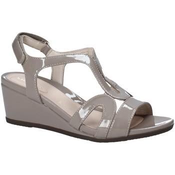 kengät Naiset Sandaalit ja avokkaat Stonefly 110241 Ruskea