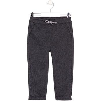 vaatteet Lapset Chino-housut / Porkkanahousut Losan 025-6027AL Harmaa