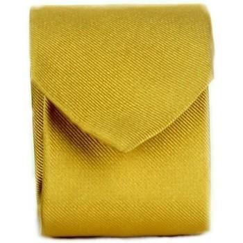 vaatteet Miehet Solmiot ja asusteet Michi D'amato CRAVATTA 002 Yellow