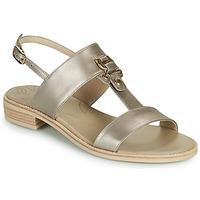 kengät Naiset Sandaalit ja avokkaat NeroGiardini PLUIE Kulta