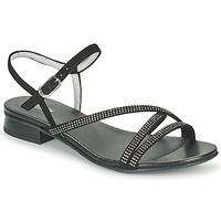 kengät Naiset Sandaalit ja avokkaat NeroGiardini TEDDY Musta