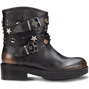 kengät Naiset Bootsit Cult CLE104129 Musta