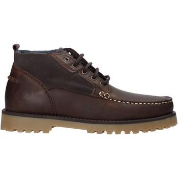 kengät Miehet Sandaalit ja avokkaat Docksteps DSE106031 Ruskea