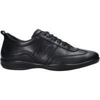 kengät Miehet Tennarit Docksteps DSM105001 Musta