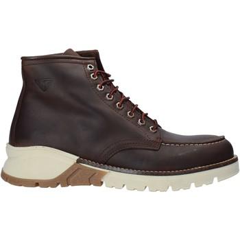 kengät Miehet Sandaalit ja avokkaat Docksteps DSM106202 Ruskea