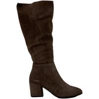 kengät Naiset Bootsit Bueno Shoes 20WR5104 Ruskea