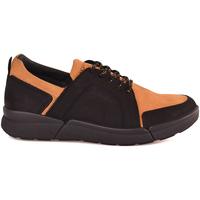 kengät Miehet Matalavartiset tennarit IgI&CO 2126333 Musta