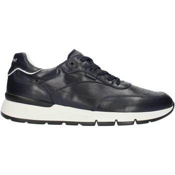 kengät Miehet Matalavartiset tennarit Nero Giardini E101992U Blue