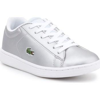kengät Lapset Matalavartiset tennarit Lacoste 734SPC0006334 Hopeanväriset