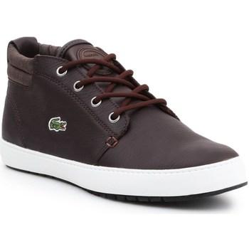 kengät Naiset Bootsit Lacoste Apmthill Terra Hhi Spw Ruskeat