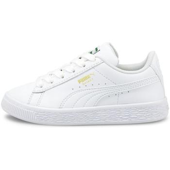 kengät Lapset Matalavartiset tennarit Puma Basket classic xxi ps Valkoinen