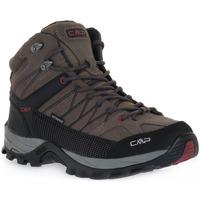 kengät Naiset Juoksukengät / Trail-kengät Cmp 02PD RIGEL MID TREKKING Grigio