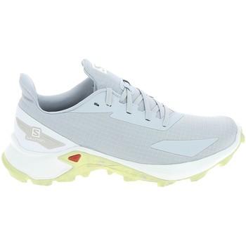 kengät Naiset Vaelluskengät Salomon Alphacross Blast Blanc Valkoinen