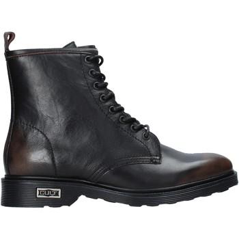kengät Miehet Bootsit Cult CLE103770 Musta