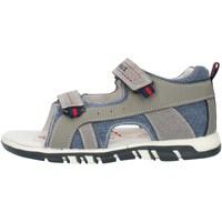 kengät Pojat Sandaalit ja avokkaat Lumberjack SB42106005X84 Grey