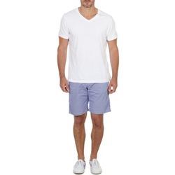 vaatteet Miehet Shortsit / Bermuda-shortsit Franklin & Marshall GAWLER Sininen / Beige