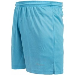 vaatteet Lapset Shortsit / Bermuda-shortsit Precision  Sky Blue