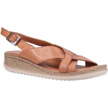 kengät Naiset Sandaalit ja avokkaat Hush puppies  Tan