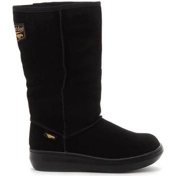 kengät Naiset Saappaat Rocket Dog  Black