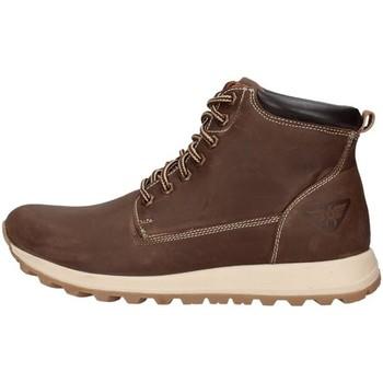 kengät Miehet Bootsit Docksteps PF2118DSE005DSE BROWN