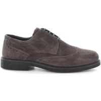 kengät Lapset Derby-kengät IgI&CO 6657600 GREY