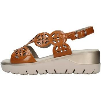 kengät Naiset Sandaalit ja avokkaat CallagHan 26510 BROWN