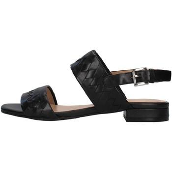 kengät Naiset Sandaalit ja avokkaat Apepazza S1PETIT18/VEG BLACK
