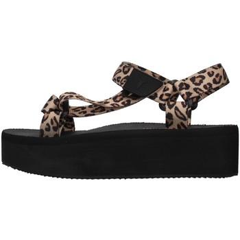 kengät Naiset Sandaalit ja avokkaat Windsor Smith POPPED BROWN