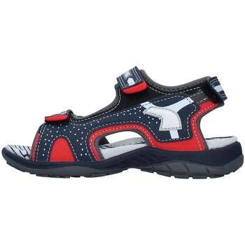kengät Pojat Sandaalit ja avokkaat Primigi 7462522 NAVY BLUE
