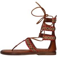 kengät Naiset Sandaalit ja avokkaat Zoe INCAS05 BROWN