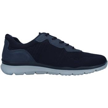 kengät Miehet Matalavartiset tennarit Enval 7218211 BLUE