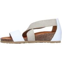 kengät Naiset Sandaalit ja avokkaat IgI&CO 7185055 WHITE