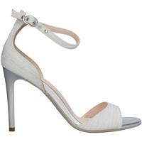 kengät Naiset Sandaalit ja avokkaat NeroGiardini E116531DE WHITE
