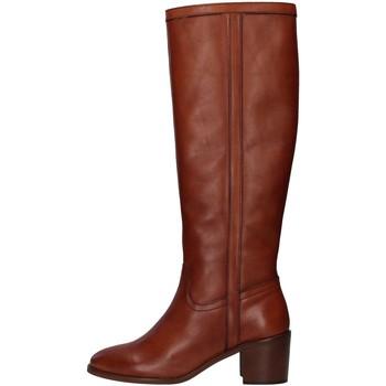 kengät Naiset Saappaat Paola Ferri D7285 BROWN